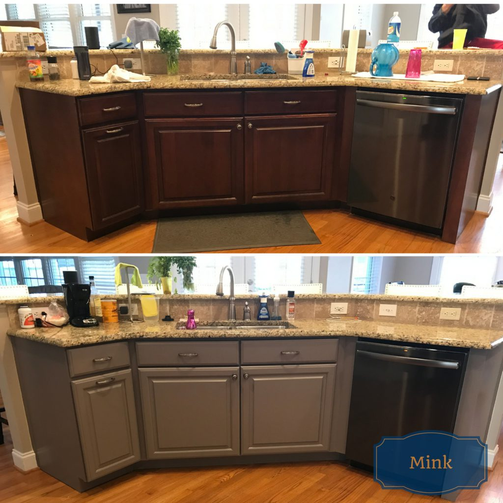 Sherwin Williams Mink Bathroom: Before & Afters: